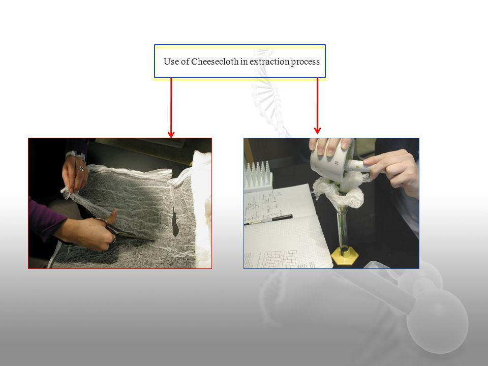 Use of Cheesecloth in extraction process
