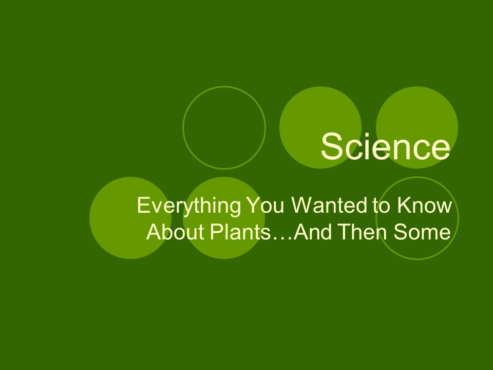 Science Everything You Wanted to Know About Plants…And Then Some