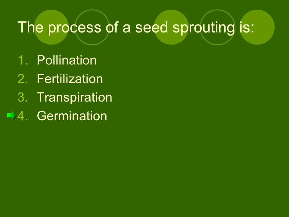 The process of a seed sprouting is: 1.Pollination 2.Fertilization 3.Transpiration 4.Germination