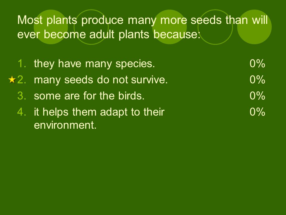 Most plants produce many more seeds than will ever become adult plants because: 1.they have many species. 2.many seeds do not survive. 3.some are for