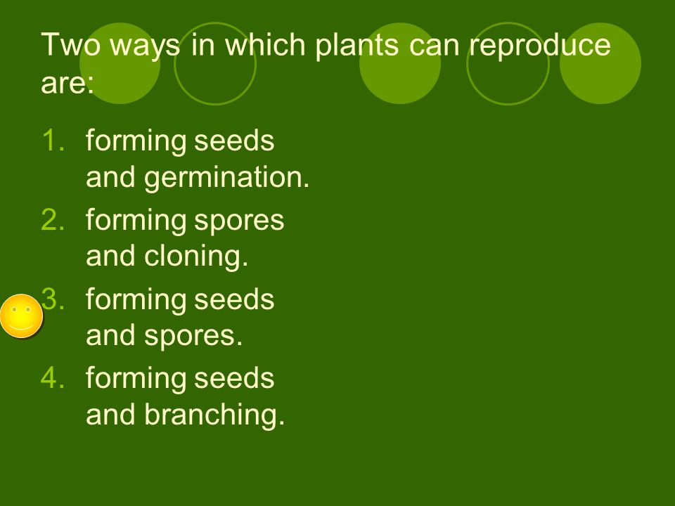 Two ways in which plants can reproduce are: 1.forming seeds and germination. 2.forming spores and cloning. 3.forming seeds and spores. 4.forming seeds
