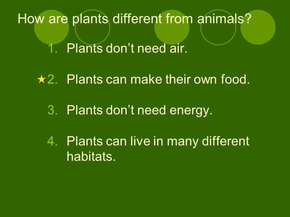 How are plants different from animals? 1.Plants don't need air. 2.Plants can make their own food. 3.Plants don't need energy. 4.Plants can live in man