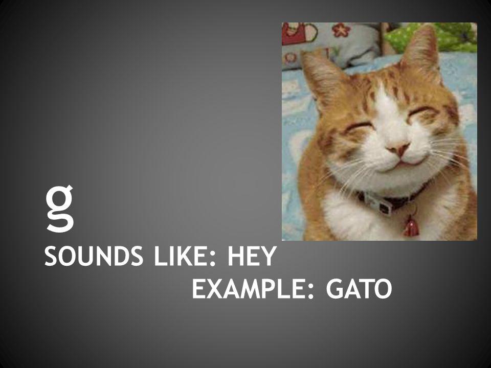 SOUNDS LIKE: HEY EXAMPLE: GATO g