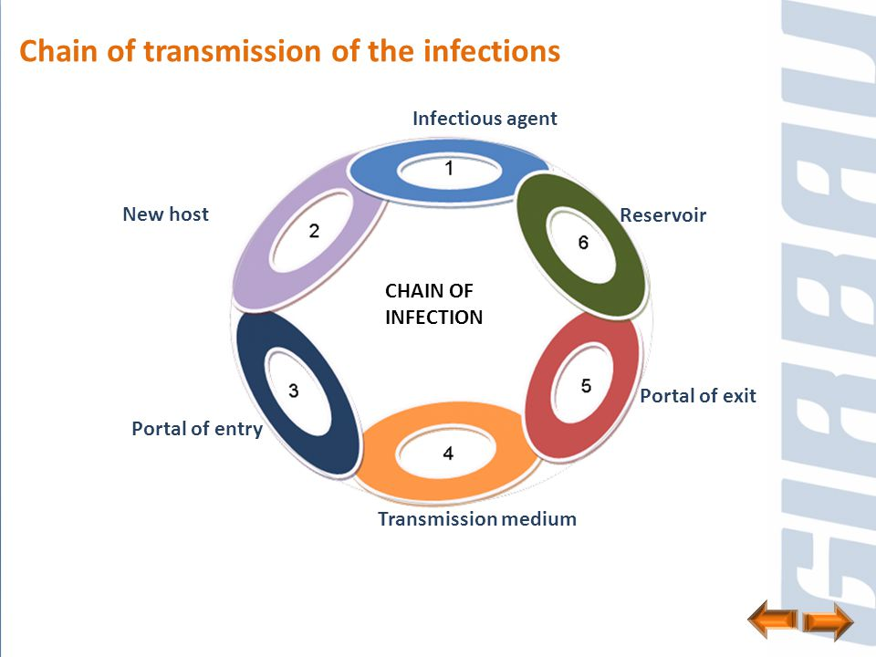 Each of the pathogenic germs 1.