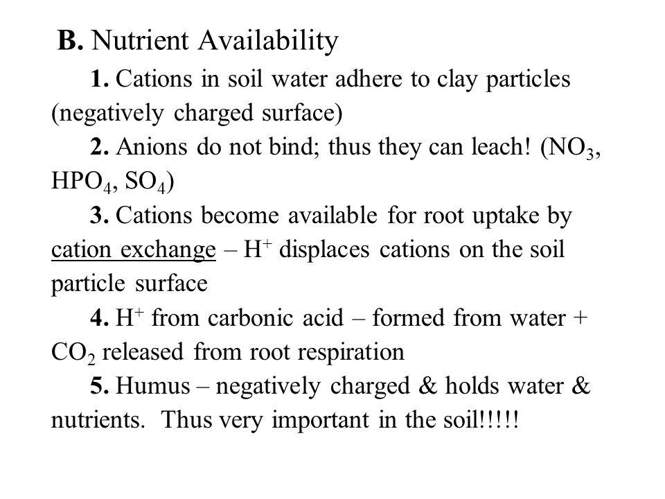 B.Nutrient Availability 1.