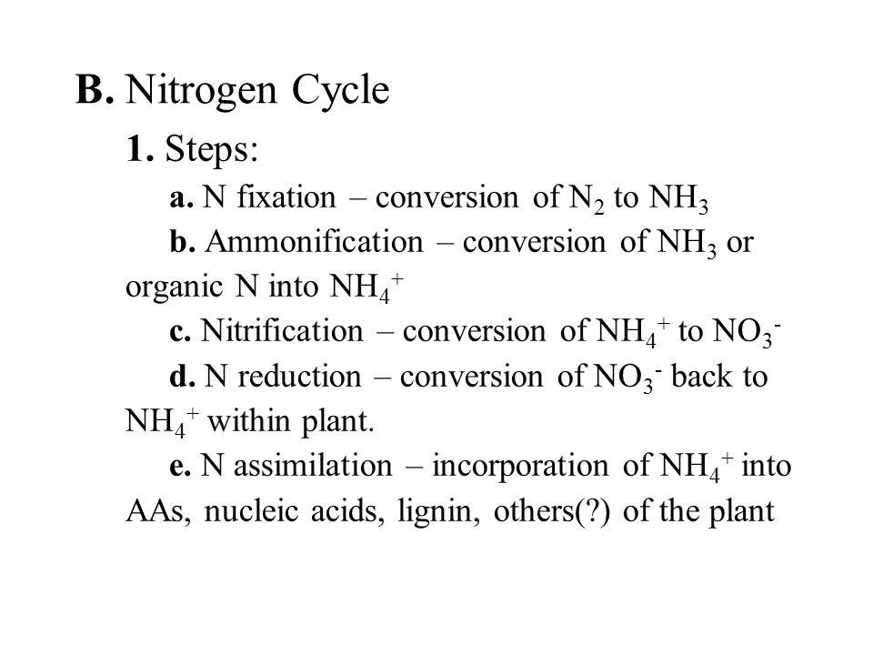 B.Nitrogen Cycle 1. Steps: a. N fixation – conversion of N 2 to NH 3 b.