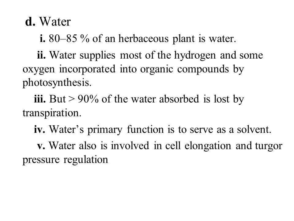 d. Water i. 80–85 % of an herbaceous plant is water. ii. Water supplies most of the hydrogen and some oxygen incorporated into organic compounds by ph