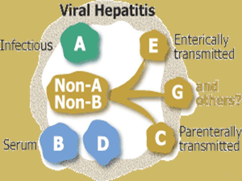  Hepatitis A  Hepatitis A virus is a non enveloped 27-nm, heat-, acid-, and ether-resistant RNA virus in the hepatovirus genus of the picornavirus family.