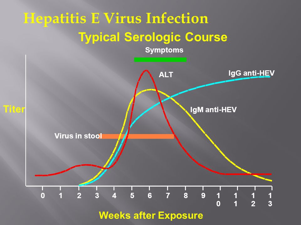 Symptoms ALT IgG anti-HEV IgM anti-HEV Virus in stool 012345678910101 1212 1313 Hepatitis E Virus Infection Typical Serologic Course Titer Weeks after Exposure