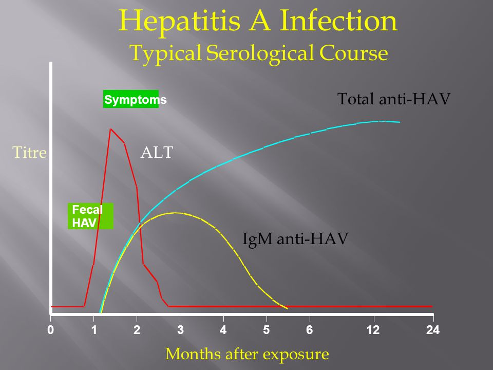Fecal HAV Symptoms 0123 4561224 Hepatitis A Infection Total anti-HAV TitreALT IgM anti-HAV Months after exposure Typical Serological Course