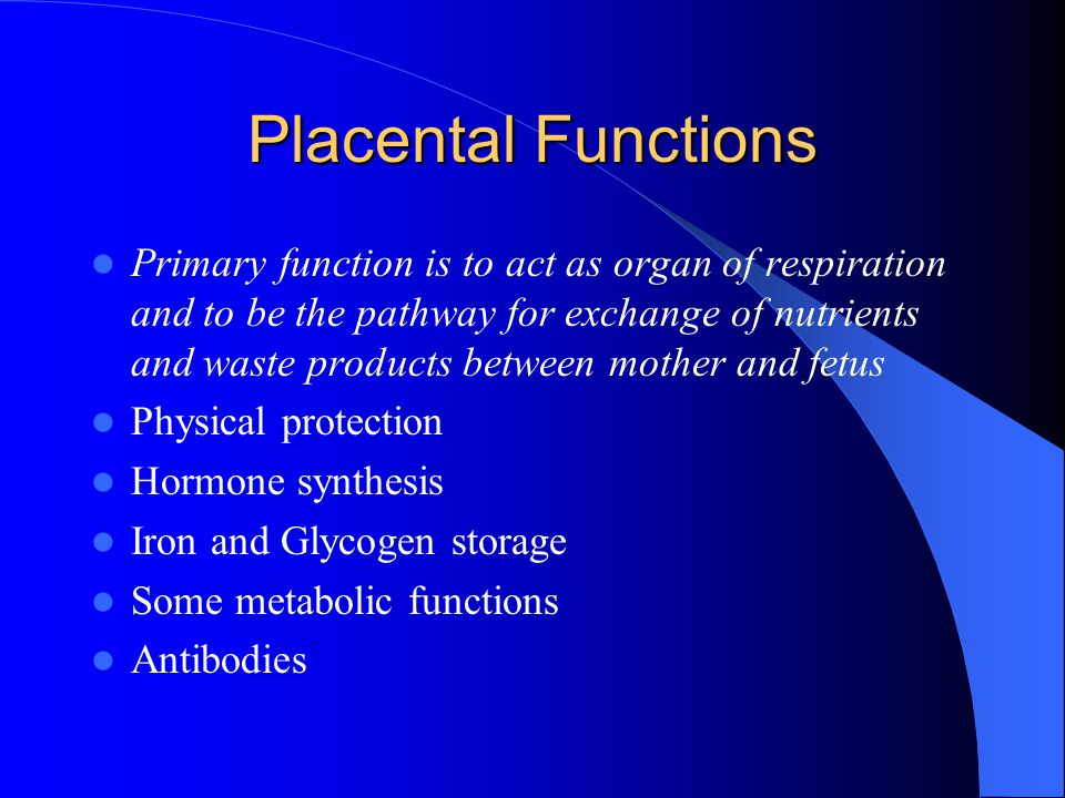 Summary: Fetal Circulation 3 Shunts: Ductus Venosus, Foramen Ovale, and Ductus Arteriosus Placental Circulation Only 3-10% of fetal cardiac output actually perfuses the fetal lungs