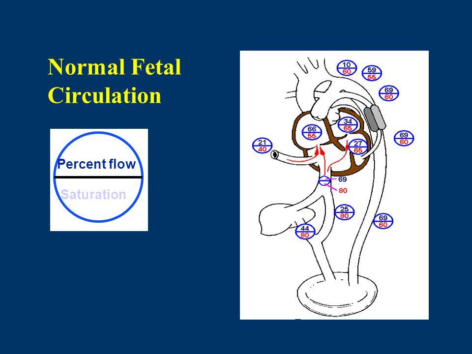 Normal Fetal Circulation Percent flow Saturation
