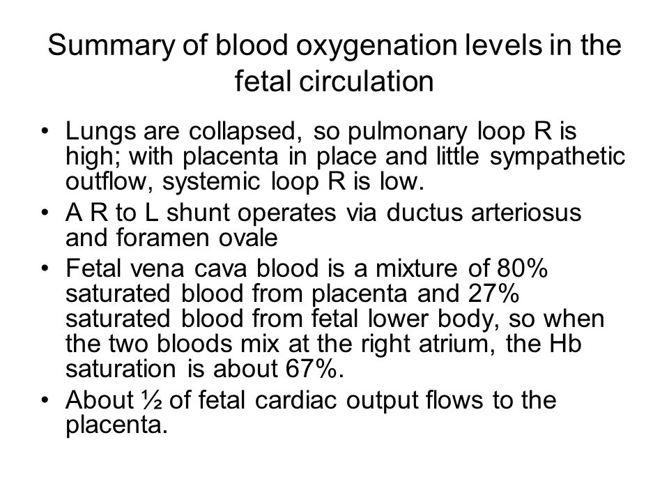 Summary of blood oxygenation levels in the fetal circulation Lungs are collapsed, so pulmonary loop R is high; with placenta in place and little sympa