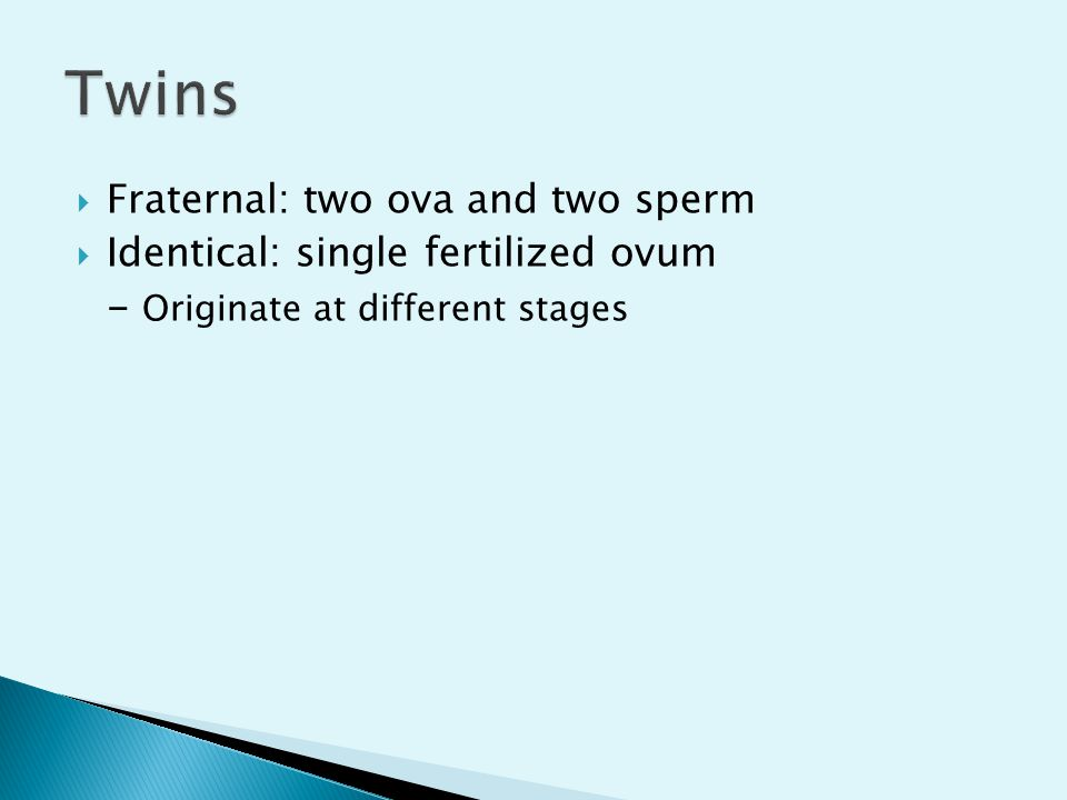  Fraternal: two ova and two sperm  Identical: single fertilized ovum - Originate at different stages