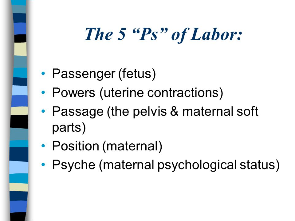"""The 5 """"Ps"""" of Labor: Passenger (fetus) Powers (uterine contractions) Passage (the pelvis & maternal soft parts) Position (maternal) Psyche (maternal p"""