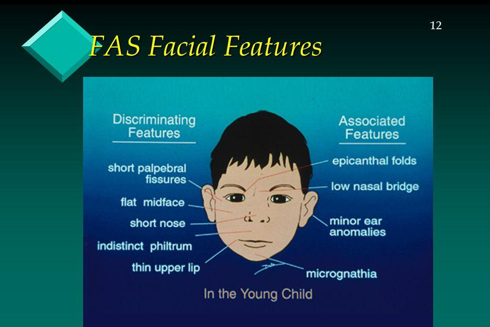 12 FAS Facial Features