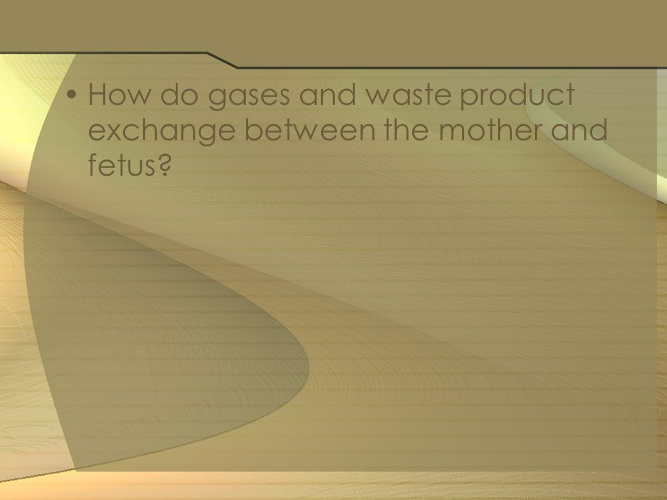 How do gases and waste product exchange between the mother and fetus