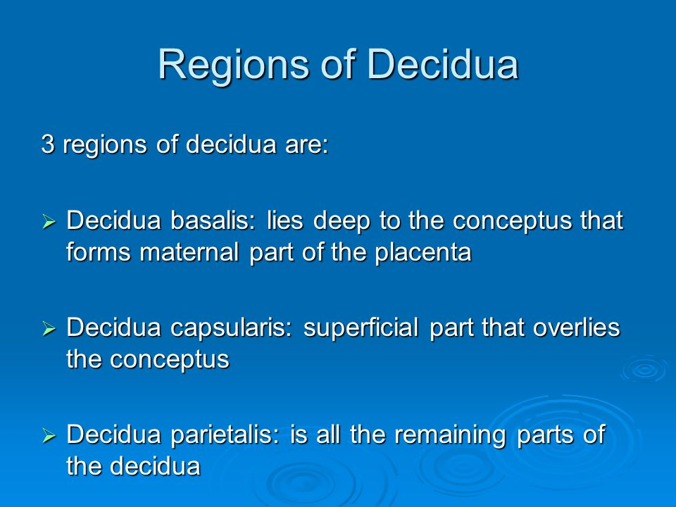 Regions of Decidua 3 regions of decidua are:  Decidua basalis: lies deep to the conceptus that forms maternal part of the placenta  Decidua capsular