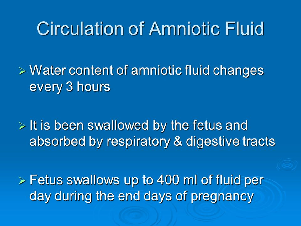 Circulation of Amniotic Fluid  Water content of amniotic fluid changes every 3 hours  It is been swallowed by the fetus and absorbed by respiratory