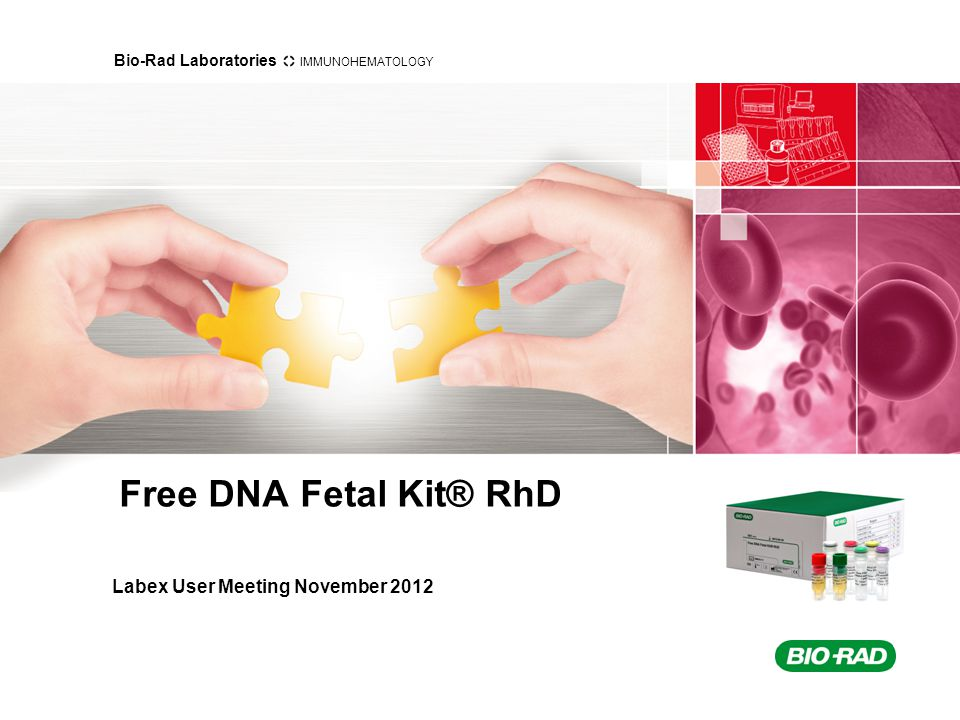 Bio-Rad Laboratories IMMUNOHEMATOLOGY Content of this presentation History of the D Clinical aspects Method and Kit content Free DNA Fetal Kit® RhD RHD and RHD Ψ Interpretation Internal Fetal DNA Control Marker Results from Evaluations and Studies