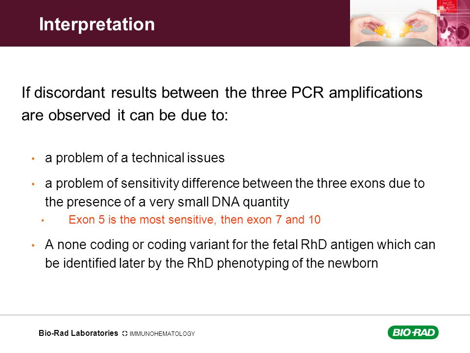 Bio-Rad Laboratories IMMUNOHEMATOLOGY Interpretation If discordant results between the three PCR amplifications are observed it can be due to: a probl