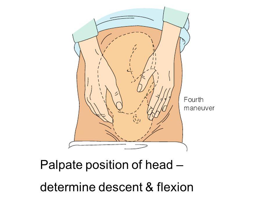 Palpate position of head – determine descent & flexion