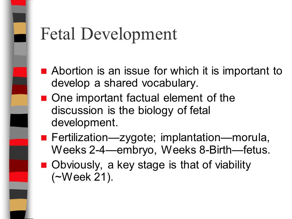 Fetal Development Abortion is an issue for which it is important to develop a shared vocabulary.