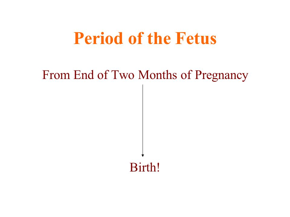 Period of the Fetus From End of Two Months of Pregnancy Birth!