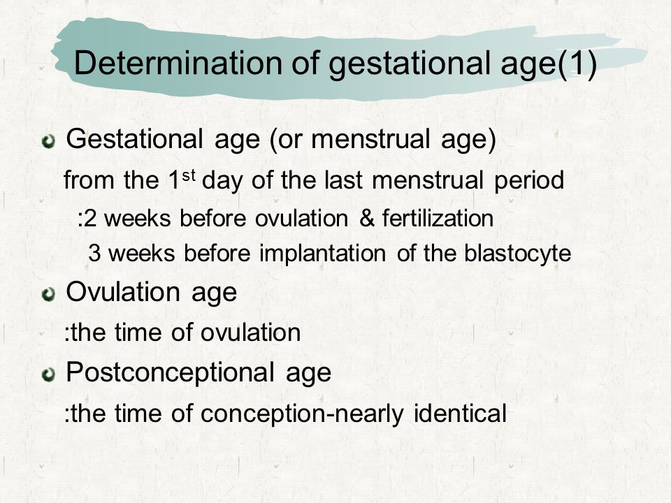 Determination of gestational age(1) Gestational age (or menstrual age) from the 1 st day of the last menstrual period : 2 weeks before ovulation & fertilization 3 weeks before implantation of the blastocyte Ovulation age :the time of ovulation Postconceptional age :the time of conception-nearly identical