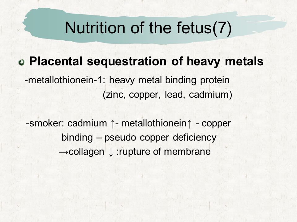 Nutrition of the fetus(7) Placental sequestration of heavy metals -metallothionein-1: heavy metal binding protein (zinc, copper, lead, cadmium) -smoker: cadmium ↑- metallothionein↑ - copper binding – pseudo copper deficiency →collagen ↓ :rupture of membrane