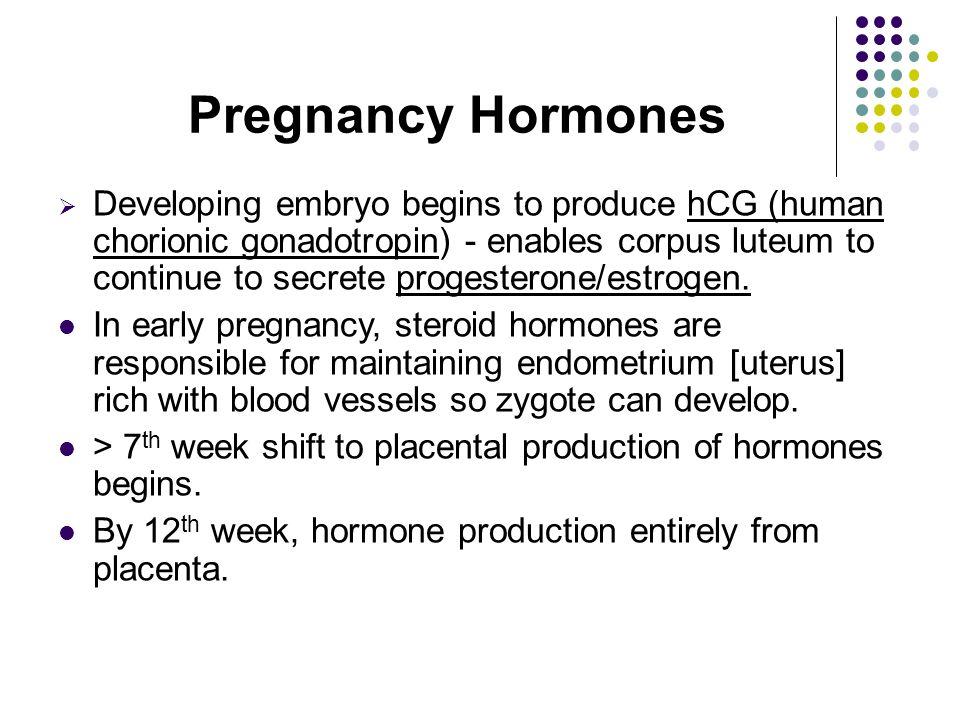 Fetal Development  32 weeks: More subcutaneous fat laid down.