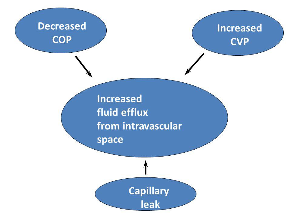 Decreased COP Increased CVP Capillary leak Increased fluid efflux from intravascular space