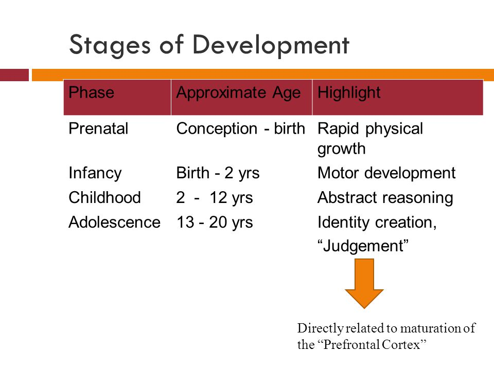 Phases of Prenatal Development  Ovum + sperm  zygote  Once zygote implants in uterus  embryo  Week 8 until birth  fetus