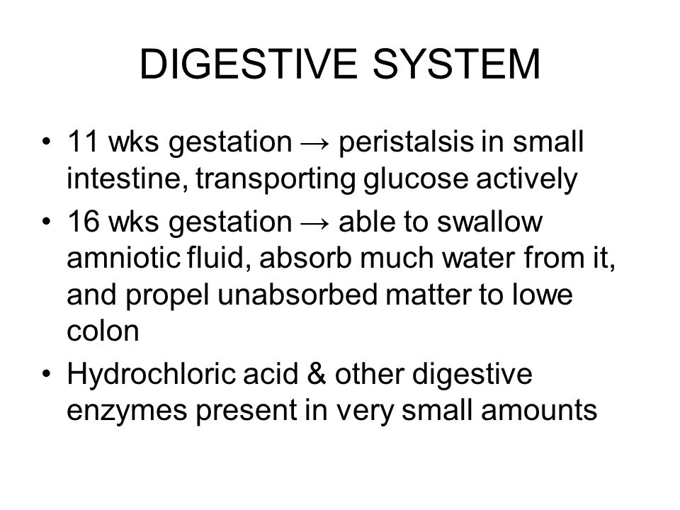 DIGESTIVE SYSTEM 11 wks gestation → peristalsis in small intestine, transporting glucose actively 16 wks gestation → able to swallow amniotic fluid, a