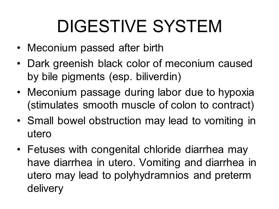 DIGESTIVE SYSTEM Meconium passed after birth Dark greenish black color of meconium caused by bile pigments (esp. biliverdin) Meconium passage during l