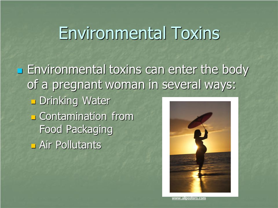 Environmental Toxins Environmental toxins can enter the body of a pregnant woman in several ways: Environmental toxins can enter the body of a pregnan