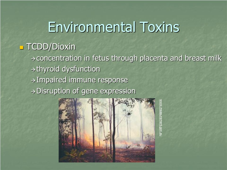 Environmental Toxins TCDD/Dioxin TCDD/Dioxin  concentration in fetus through placenta and breast milk  thyroid dysfunction  Impaired immune respons