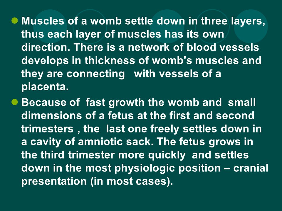 Muscles of a womb settle down in three layers, thus each layer of muscles has its own direction.