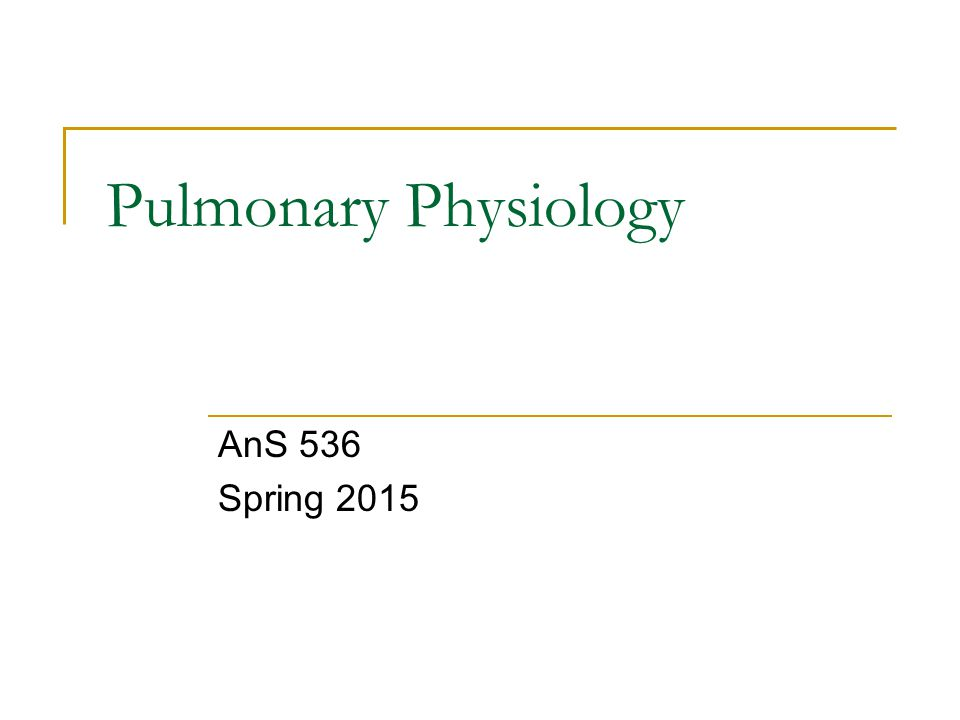 Pulmonary Physiology AnS 536 Spring 2015
