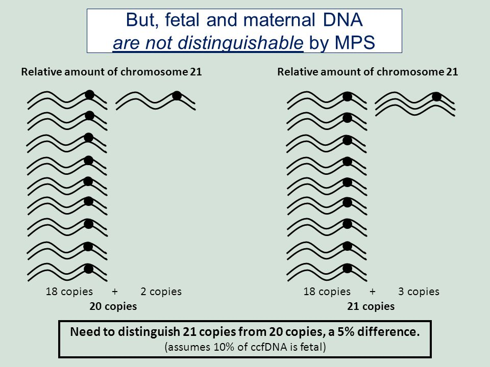 Relative amount of chromosome 21 18 copies + 2 copies 20 copies 18 copies + 3 copies 21 copies Relative amount of chromosome 21 Need to distinguish 21 copies from 20 copies, a 5% difference.