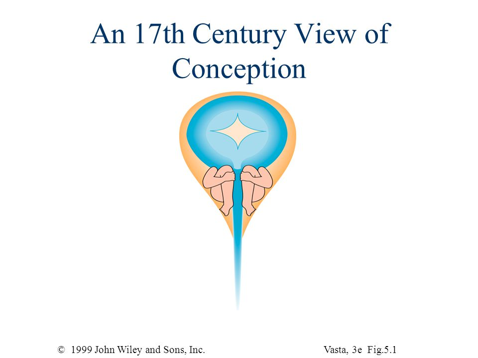 © 1999 John Wiley and Sons, Inc.Vasta, 3e Fig.5.1 An 17th Century View of Conception