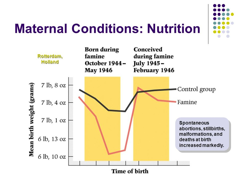 Maternal Conditions: Nutrition Rotterdam, Holland Spontaneous abortions, stillbirths, malformations, and deaths at birth increased markedly.