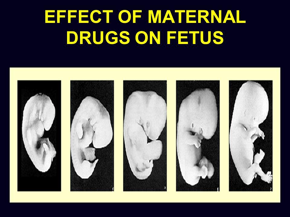 Aminoglycosides (amikacin, gentamicin, tobramycin) Pregnancy Category C Rapidly cross placenta Enter amniotic fluid through fetal circulation
