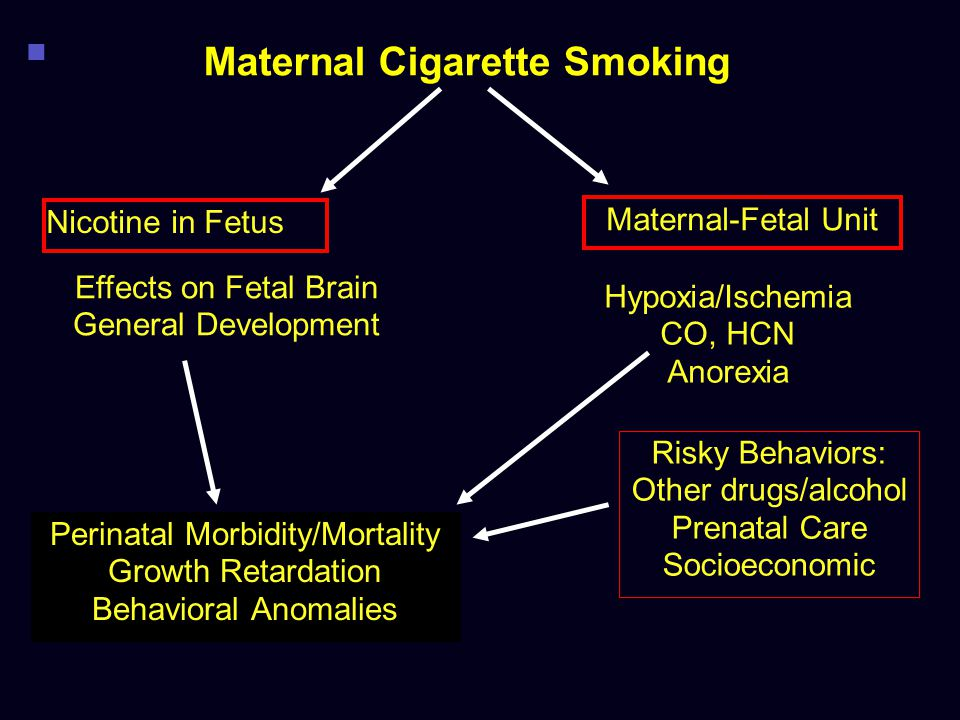 Maternal Cigarette Smoking Effects on Fetal Brain General Development Hypoxia/Ischemia CO, HCN Anorexia Maternal-Fetal Unit Nicotine in Fetus Perinata