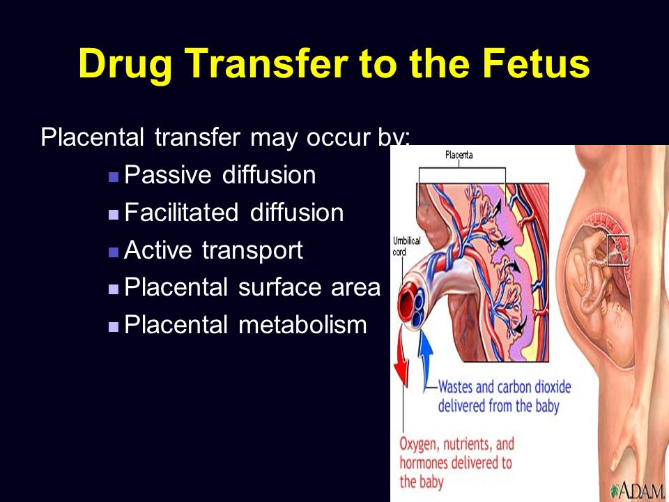 Fluoroquinolones (floxins) Pregnancy Category C Not recommended in pregnancy Cartilage damage