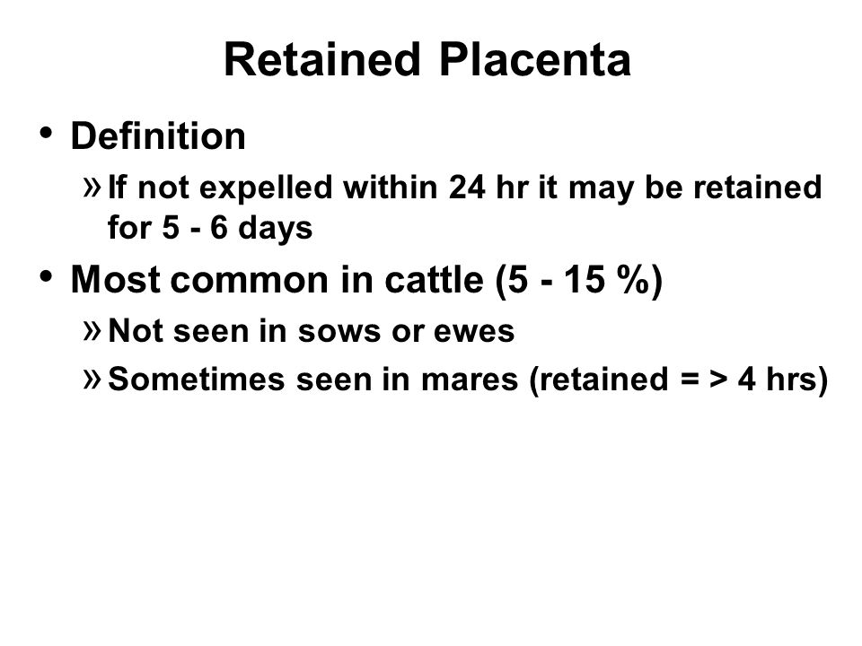 Retained Placenta Definition » If not expelled within 24 hr it may be retained for 5 - 6 days Most common in cattle (5 - 15 %) » Not seen in sows or ewes » Sometimes seen in mares (retained = > 4 hrs)
