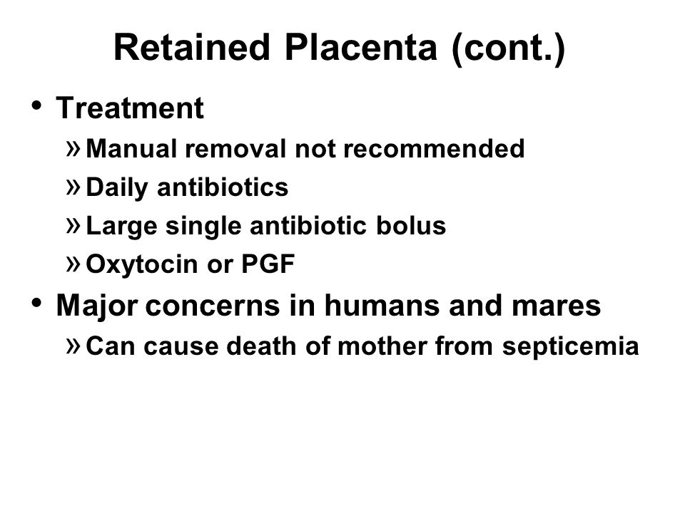 Retained Placenta (cont.) Treatment » Manual removal not recommended » Daily antibiotics » Large single antibiotic bolus » Oxytocin or PGF Major concerns in humans and mares » Can cause death of mother from septicemia