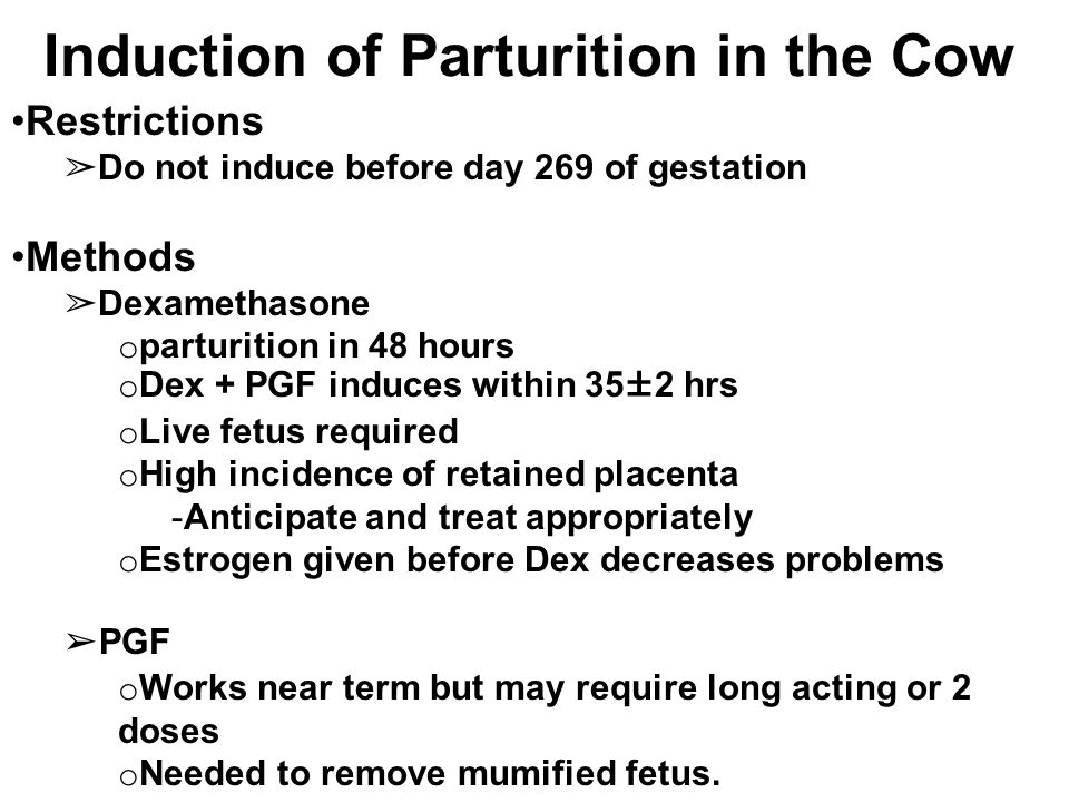 Restrictions ➢ Do not induce before day 269 of gestation Methods ➢ Dexamethasone o parturition in 48 hours o Dex + PGF induces within 35±2 hrs o Live fetus required o High incidence of retained placenta  Anticipate and treat appropriately o Estrogen given before Dex decreases problems ➢ PGF o Works near term but may require long acting or 2 doses o Needed to remove mumified fetus.