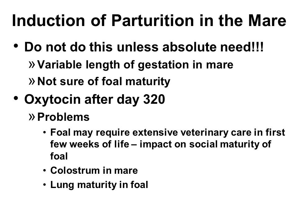 Induction of Parturition in the Mare Do not do this unless absolute need!!.