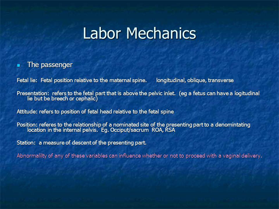 Labor Mechanics The passenger The passenger Fetal lie: Fetal position relative to the maternal spine. longitudinal, oblique, transverse Presentation: